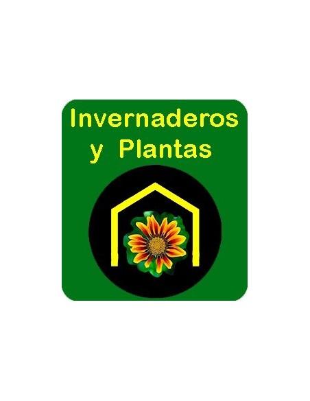 Invernaderos y Plantas